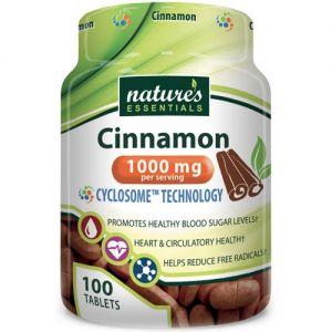 Nature's Essentials Cinnamon 1000mg 100 Tablets
