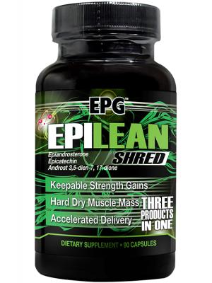 EPG Epilean Shred