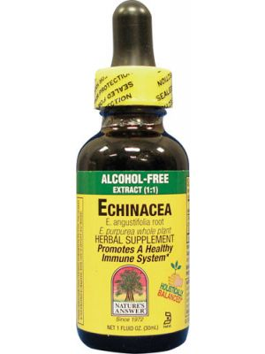 Nature's Answer Alcohol Free Echinacea Liquid Extract 1 fl oz