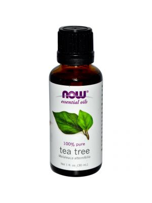 Now Foods Tea Tree Oil 1 Fl Oz